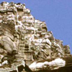 Angkor Artichokes